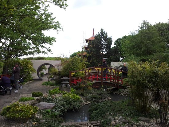 Peasholm Park: Japanese garden