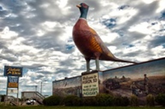 Dakota Inn: World's Largest Pheasant