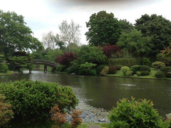 Japanese garden picture of missouri botanical garden for Japanese botanical garden