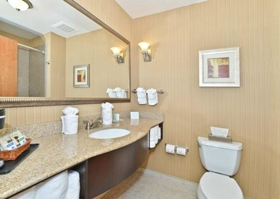 Comfort Suites Commerce: Guest Bathroom