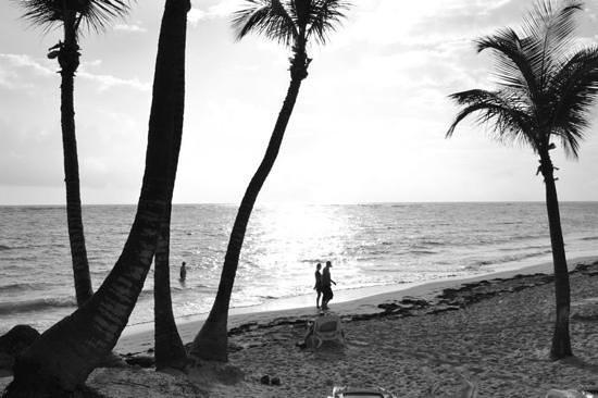 ريو بالاس بافارو أول إنكلوسيف: Beach
