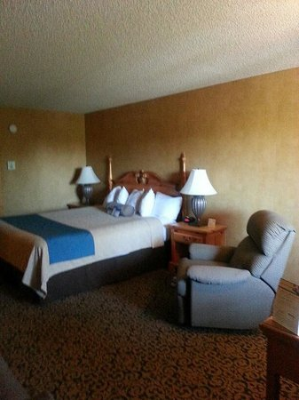 BEST WESTERN PLUS Black Oak: Room 311 . out of view desk to rt, couch/tv/bath/bar/micro.