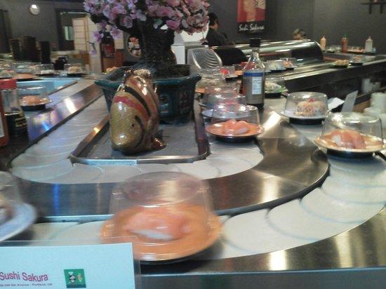 Sushi Sakura: Love the conveyor of sushi.  Too fun!