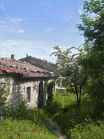 Agriturismo Borgo Cerquelle: scorcio del borgo