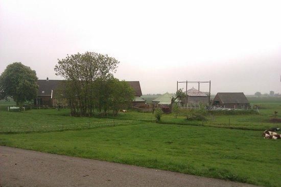 Sint Nicolaashoeve: The farm