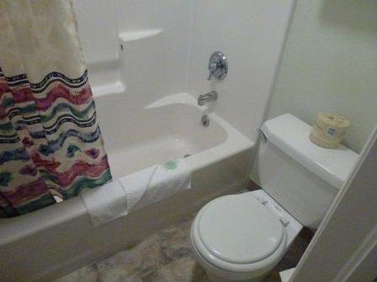 Motel Torrey: Toilet/Tub-Shower