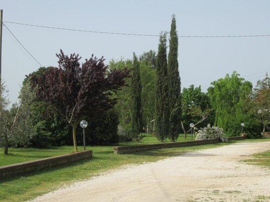 Agriturismo Sovanella: parco