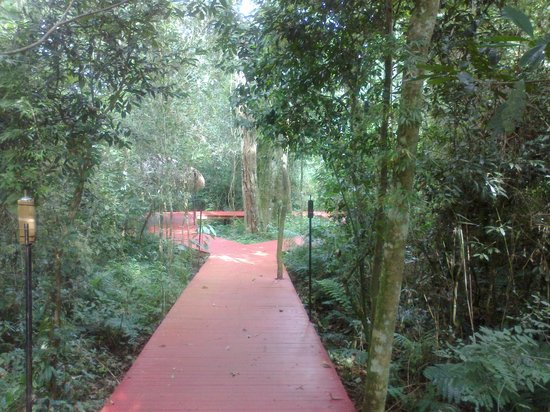 La Cantera Jungle Lodge: Recorrido