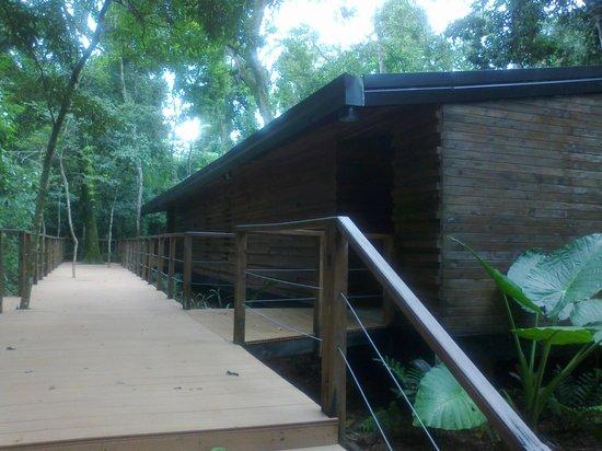 La Cantera Jungle Lodge: Pasillo hacia la habitación
