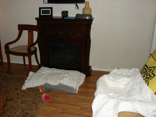 Cypress Creek Cottages: Dog beds left by owners