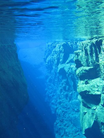 DIVE.IS: between the 2 tech tonic plates