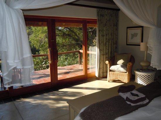 Thornybush Game Lodge: room