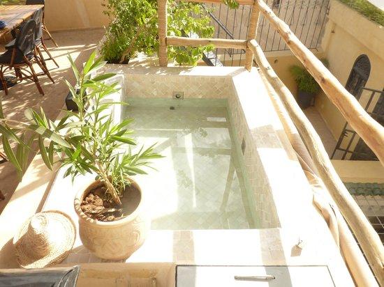 Riad Anata: petit bassin d'eau sur la terrasse