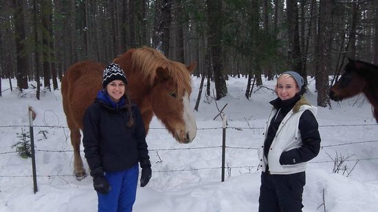 Cle Elum, WA: The girls and the horse
