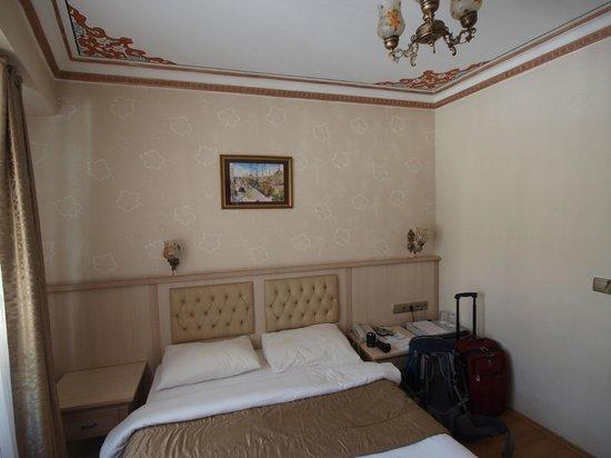 Aldem Hotel: room