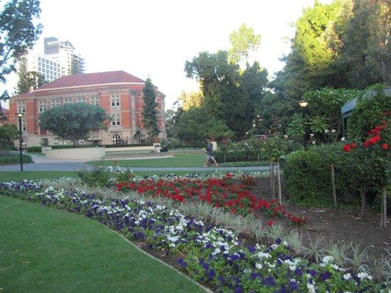 Supreme Court Gardens: north side, adjacent to Stirling Gardens