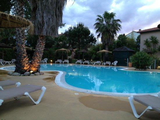 Hotel Le Cottage : La piscine