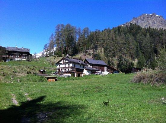 Die Bergperle: Hof Zuort im Tal Val Sinestra, nahe Bergperle