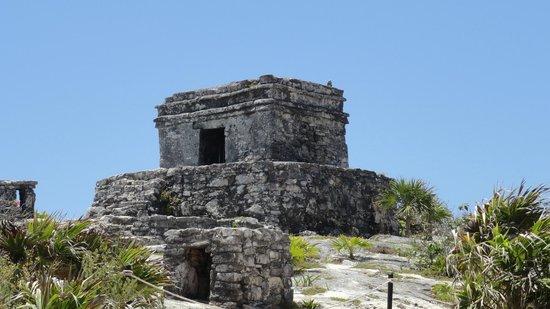 Avenida Tulum: Another ruins