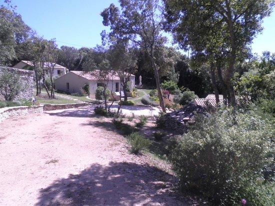 Résidence Sophia : vue de la maison où on était
