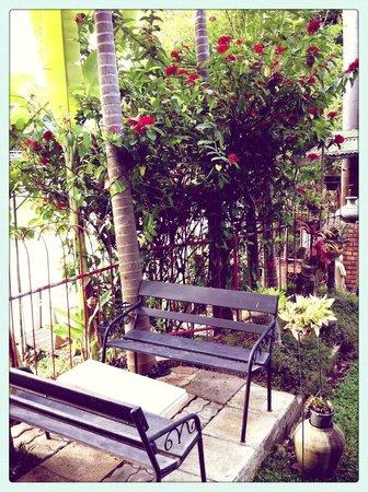 River View Lodge: Le jardin de l'hôtel