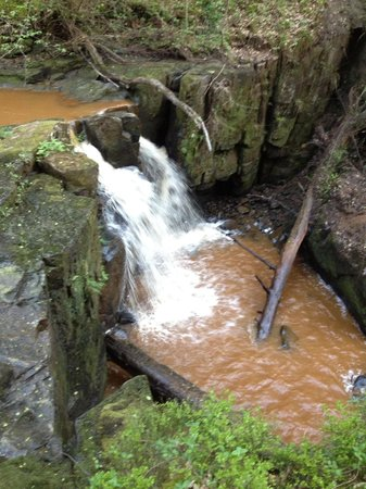 Hareshaw Linn: one of falls on way to the large waterfall!!