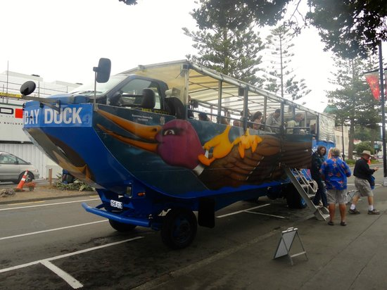 Hawke's Bay- Duck Tour