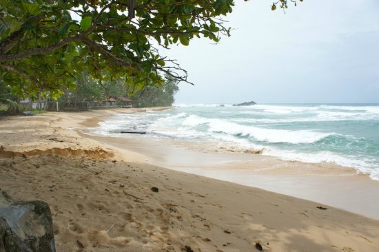 Sri Gemunu Beach Resort: Strand