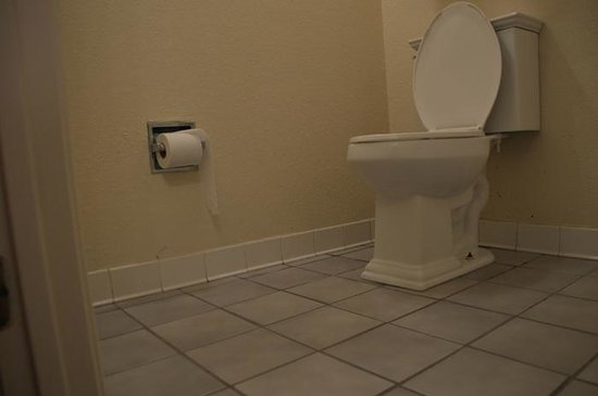 Quality Inn & Suites Pensacola Bayview: The lowest hanging toilette roll in the world?