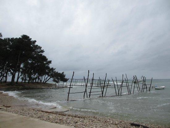 Savudrija Lighthouse: Деревянные столбы для лодок