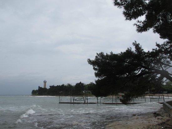 Savudrija Lighthouse: Вид со стороны пляжа