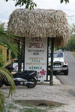 Hula Jungle