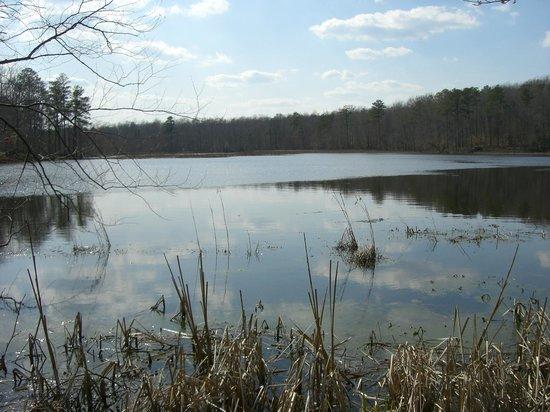 Pocahontas State Park: Beaver Lake