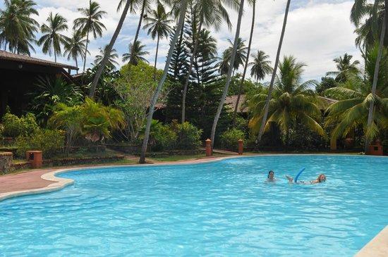 Eva Lanka Hotel: Большой бассейн