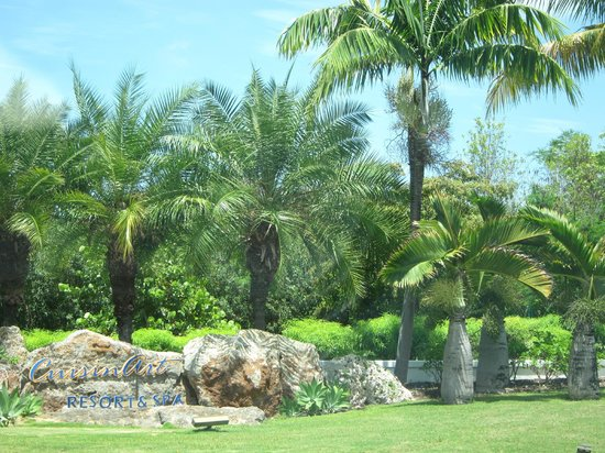 CuisinArt Golf Resort & Spa: Hotel grounds