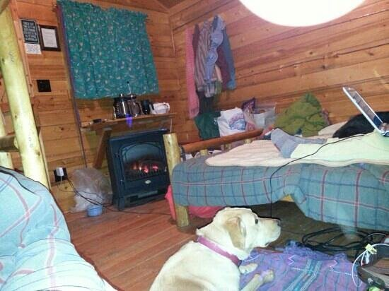 Ouray Riverside Inn and Cabins: pet friendly : )