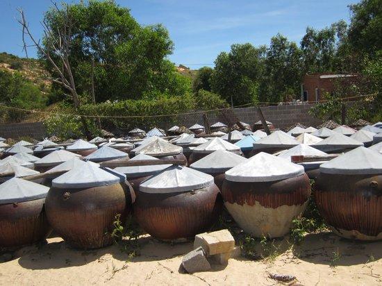 Lang Ca Voi (The Whales Village) Guesthouse : Jarres de Nuoc Màn