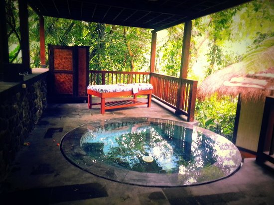 Nandini Bali Jungle Resort & Spa: jacuzzi!