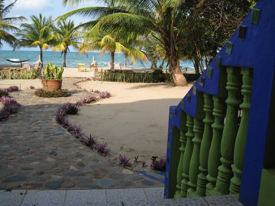 Coconut Row Guest House : Stepping off the veranda into the Caribe.