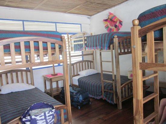Hotelito El Coco Azul: Bunk beds in the family room