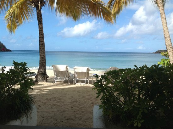 Carlisle Bay Antigua: From the steps of our beach suite