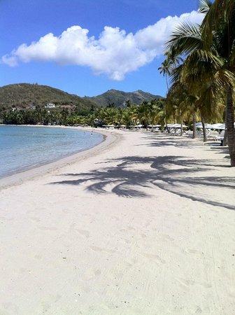 Carlisle Bay Antigua: Sweeping view of the beach