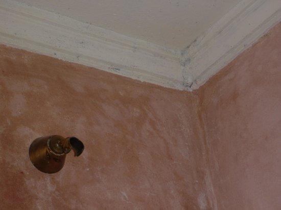 Riad Dar Dmana: Mould in the bathroom