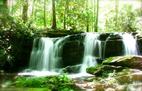 Bus Tours in the Smokies: Hidden waterfalls