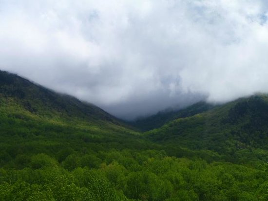 Bus Tours in the Smokies: Land of Blue Smoke