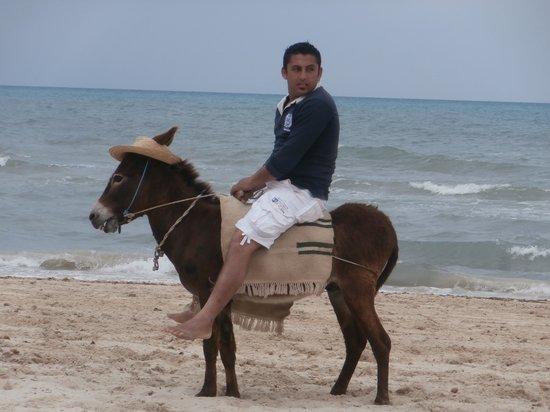 Seabel Aladin Djerba : sarko sur la plage