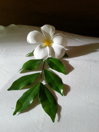 Royal Lanta Resort and Spa: Beautiful flower on the pillow
