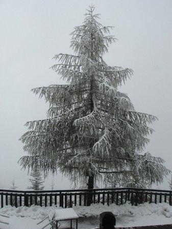 Albergo Belvedere Cogne: al risveglio