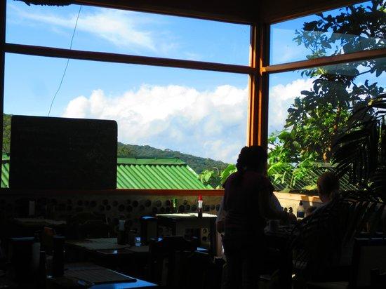 Camino Verde Bed & Breakfast Monteverde: View from dining area