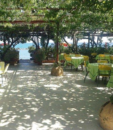 Hotel La Vela: Hotelgarten